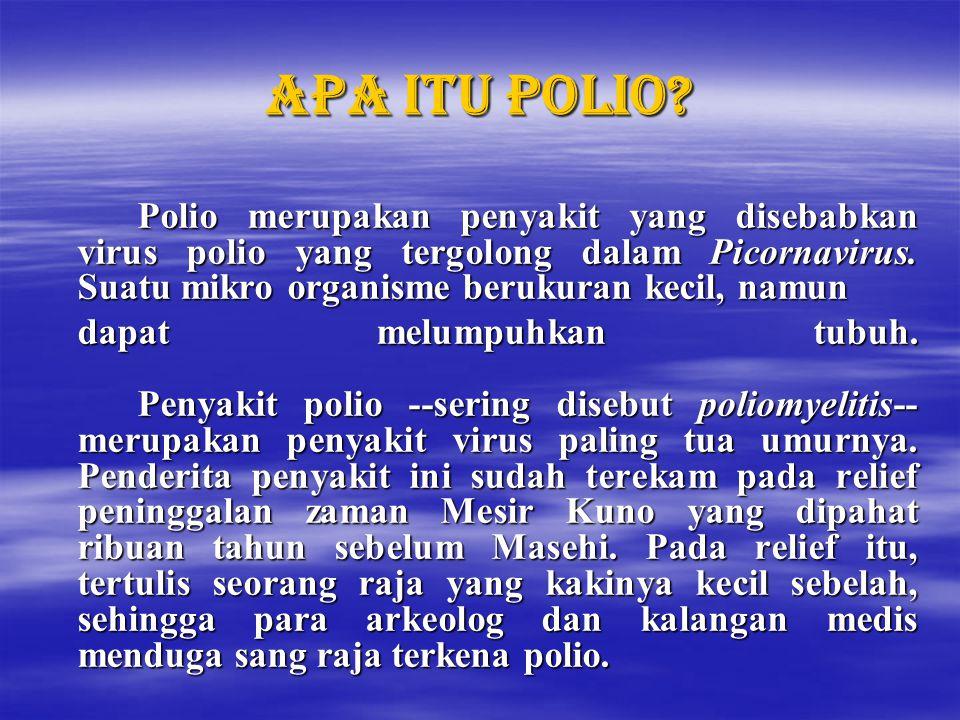 Apa itu polio Polio merupakan penyakit yang disebabkan virus polio yang tergolong dalam Picornavirus. Suatu mikro organisme berukuran kecil, namun.