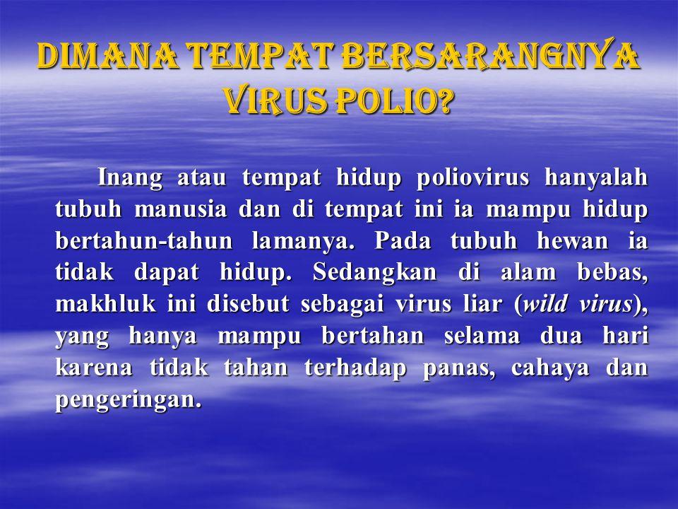Dimana tempat bersarangnya virus polio