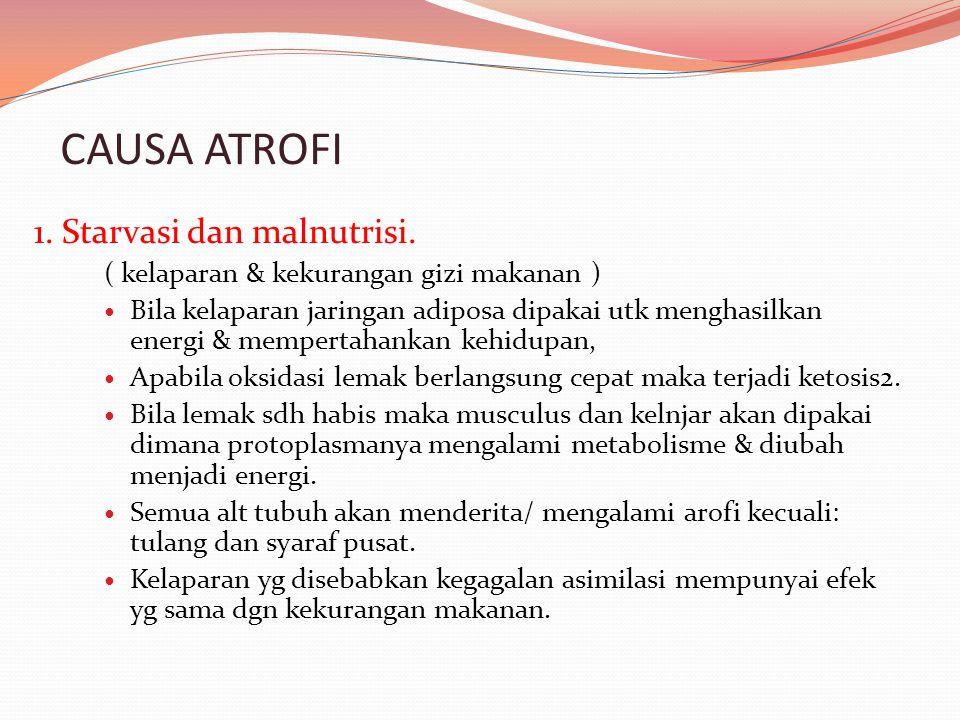 CAUSA ATROFI 1. Starvasi dan malnutrisi.