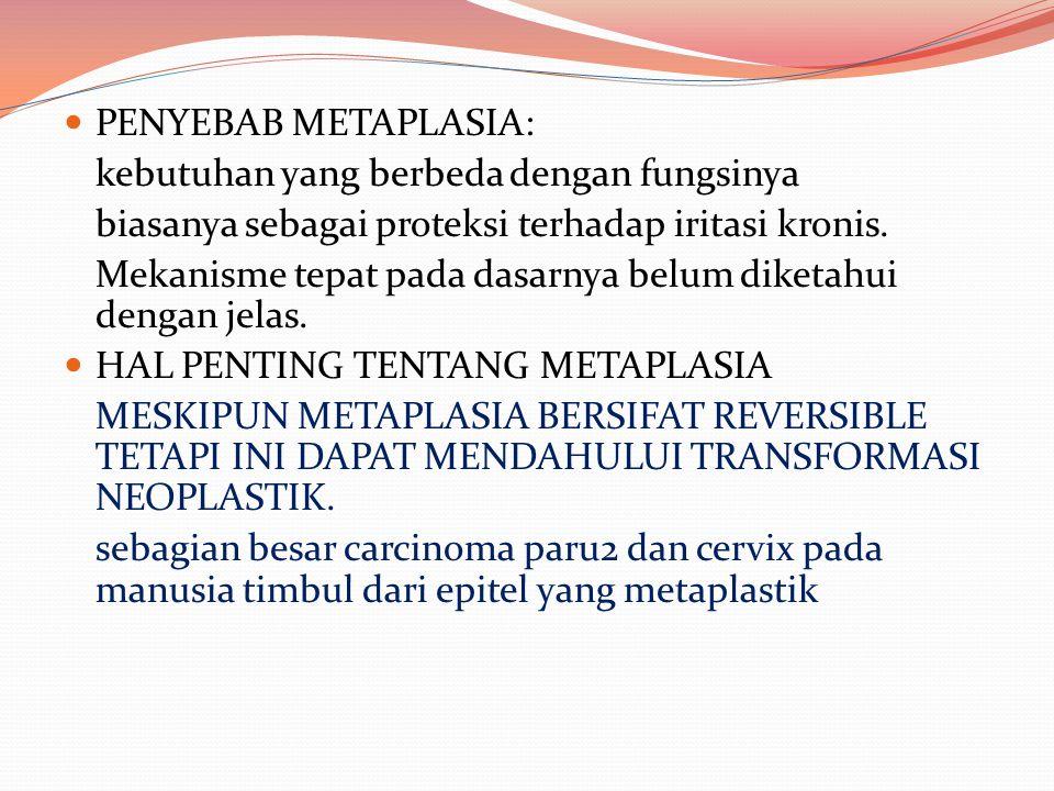 PENYEBAB METAPLASIA: kebutuhan yang berbeda dengan fungsinya. biasanya sebagai proteksi terhadap iritasi kronis.