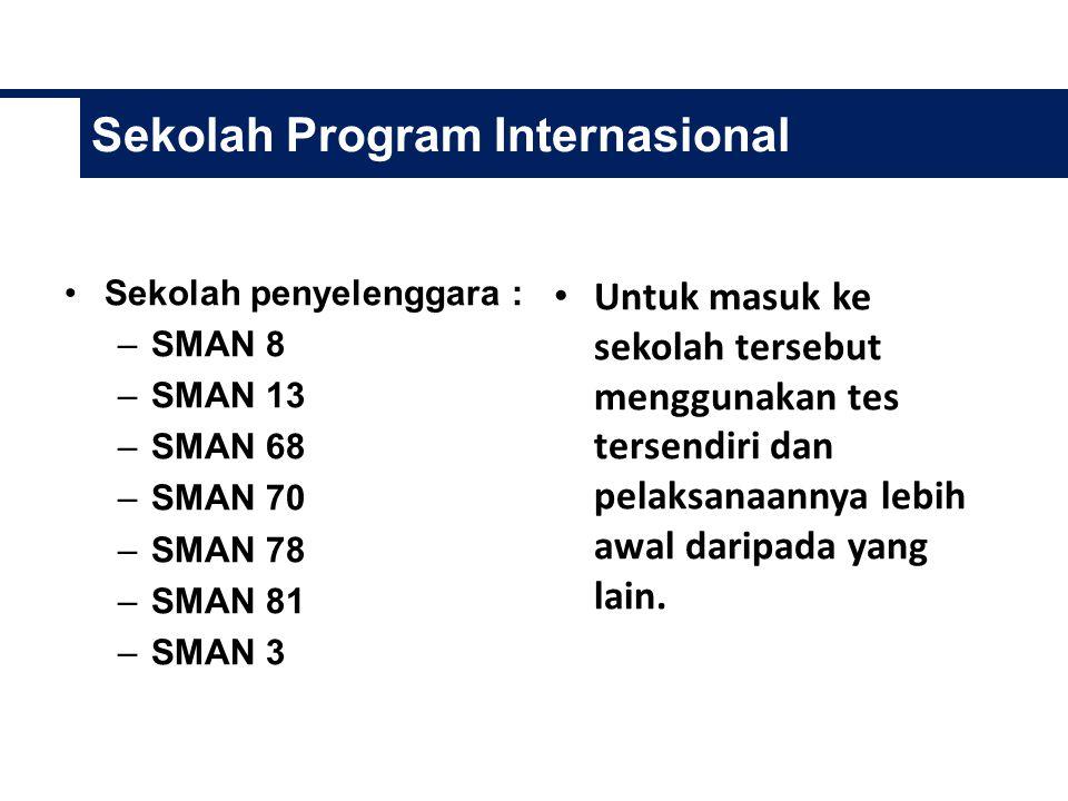 Sekolah Program Internasional