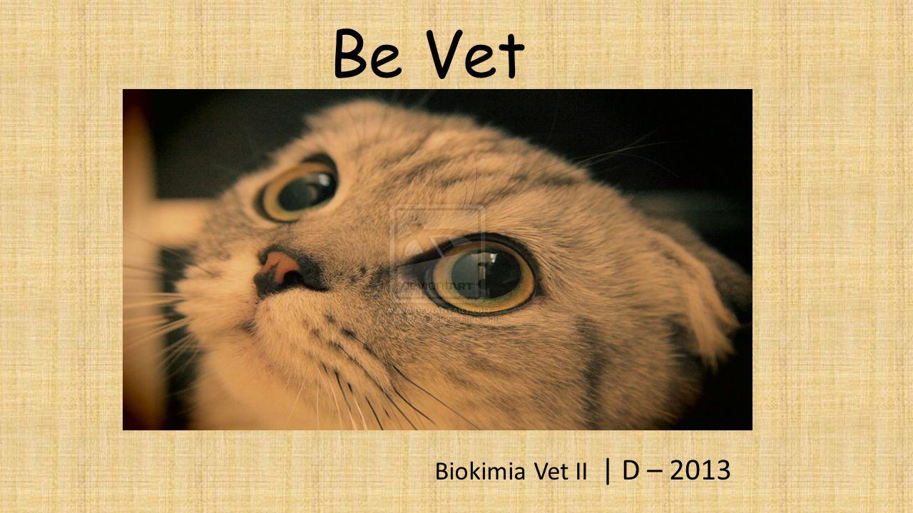 Be Vet Biokimia Vet II | D – 2013