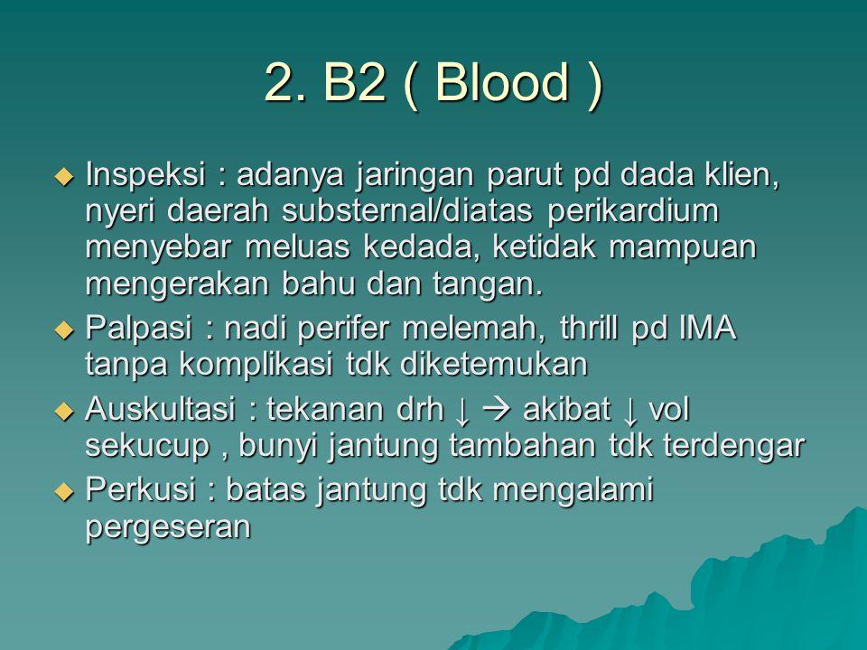 2. B2 ( Blood )