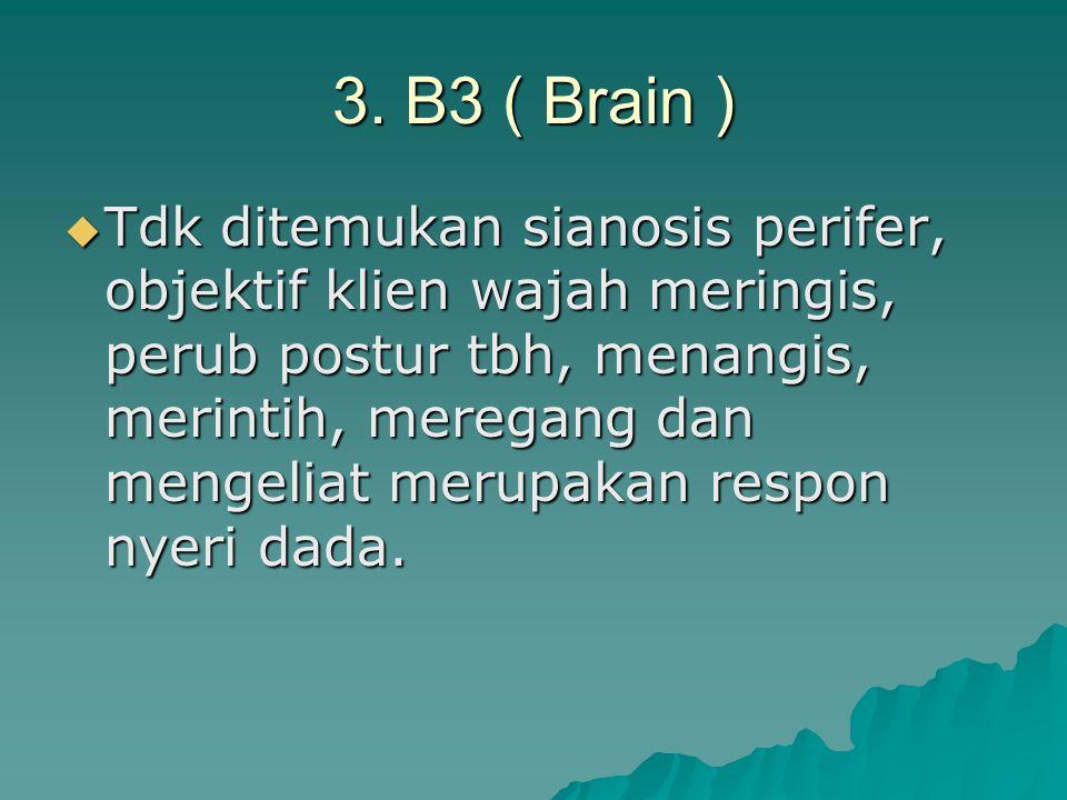 3. B3 ( Brain )