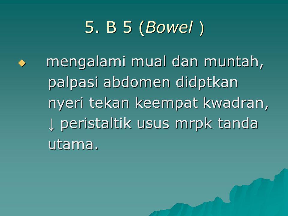 5. B 5 (Bowel ) palpasi abdomen didptkan nyeri tekan keempat kwadran,