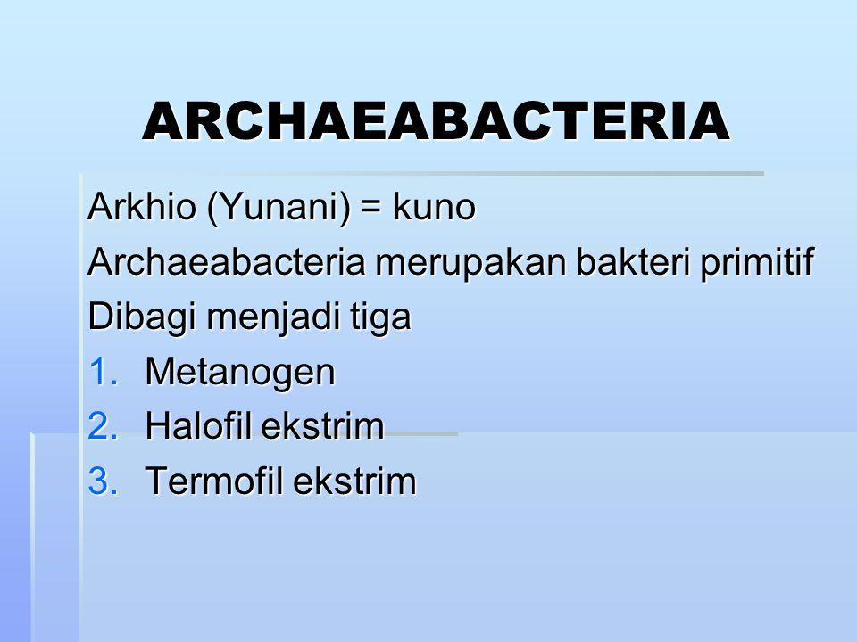 ARCHAEABACTERIA Arkhio (Yunani) = kuno