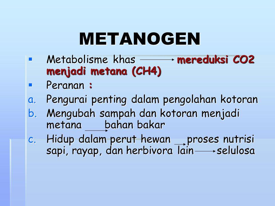 METANOGEN Metabolisme khas mereduksi CO2 menjadi metana (CH4)