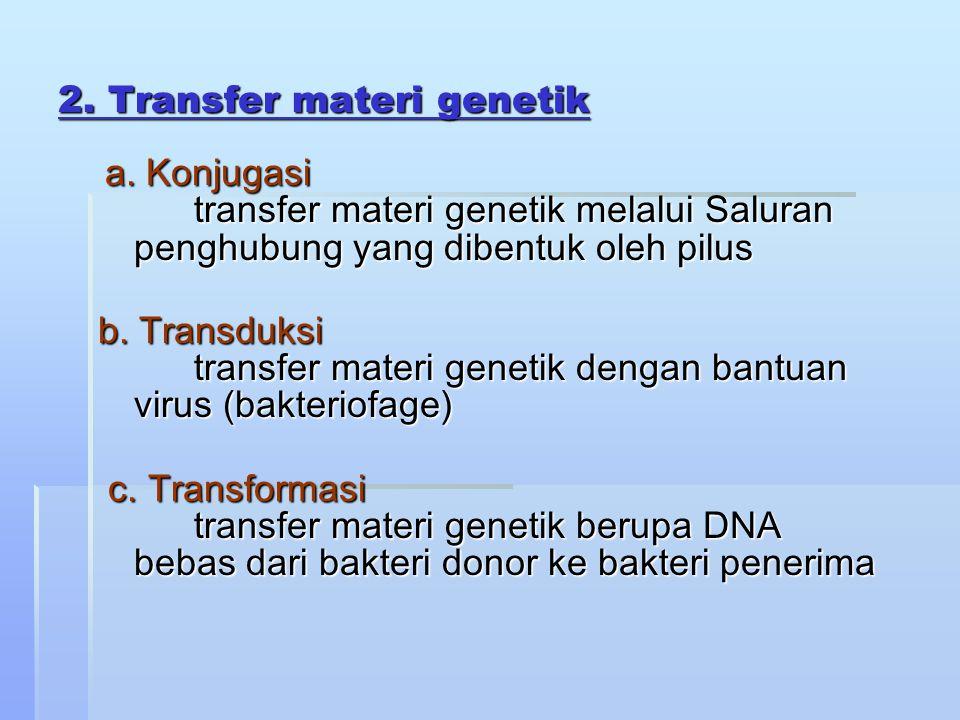 2. Transfer materi genetik