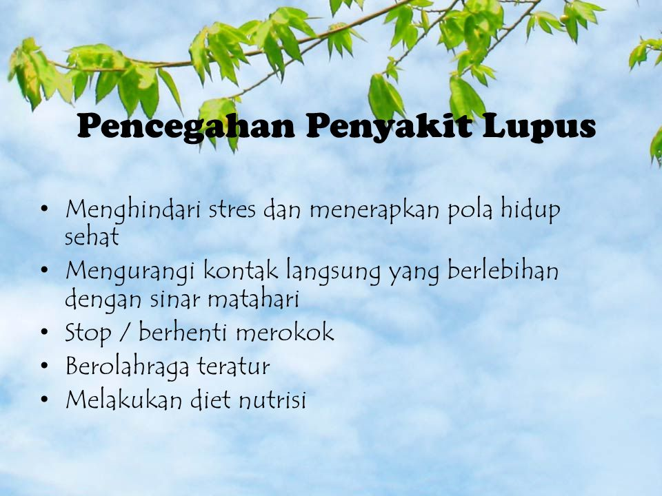 Pencegahan Penyakit Lupus