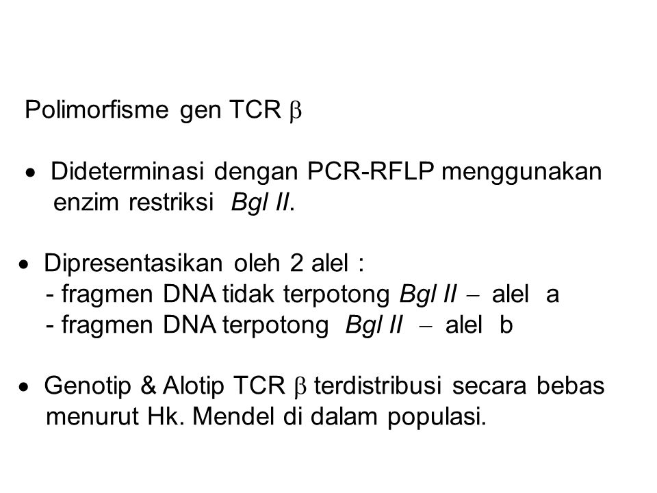 Polimorfisme gen TCR   Dideterminasi dengan PCR-RFLP menggunakan enzim restriksi Bgl II.