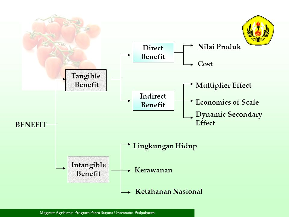 Nilai Produk Direct. Benefit. Cost. Tangible. Benefit. Multiplier Effect. Indirect. Benefit.