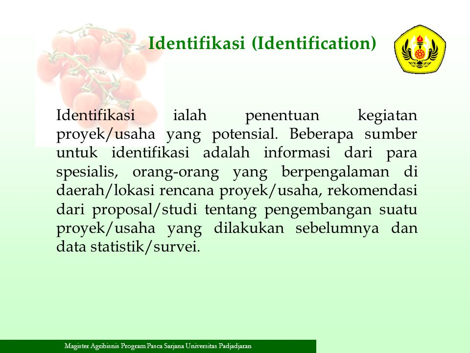 Identifikasi (Identification)