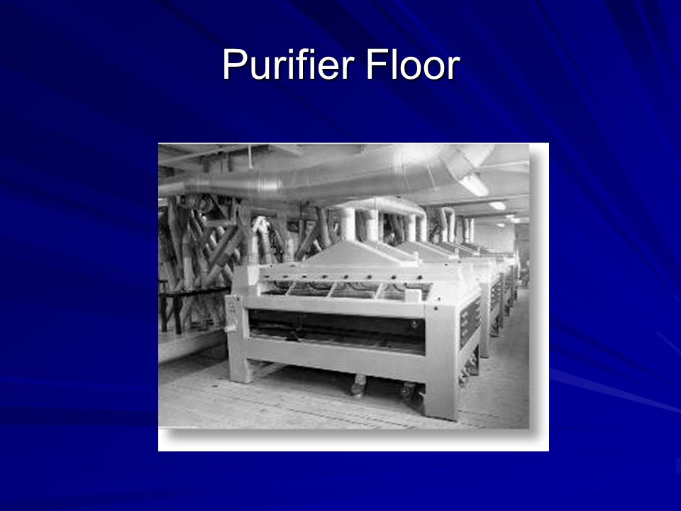 Purifier Floor