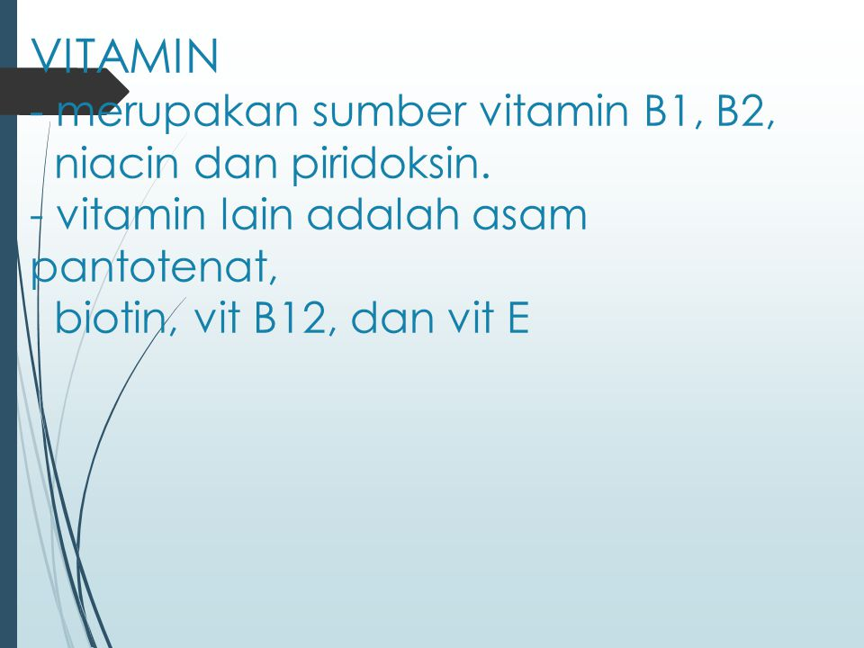 VITAMIN - merupakan sumber vitamin B1, B2, niacin dan piridoksin