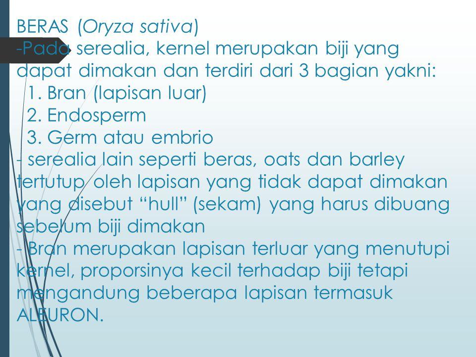 BERAS (Oryza sativa) -Pada serealia, kernel merupakan biji yang dapat dimakan dan terdiri dari 3 bagian yakni: 1.