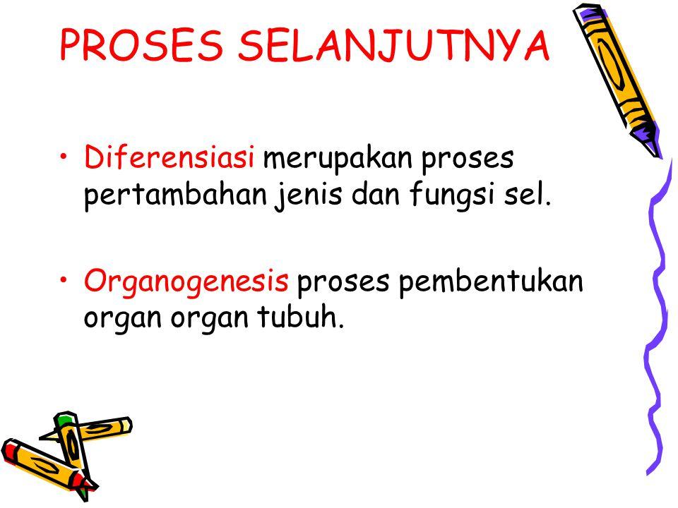 PROSES SELANJUTNYA Diferensiasi merupakan proses pertambahan jenis dan fungsi sel.