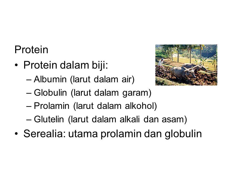 Serealia: utama prolamin dan globulin