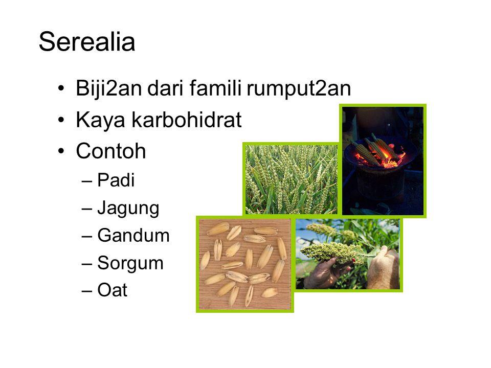 Serealia Biji2an dari famili rumput2an Kaya karbohidrat Contoh Padi