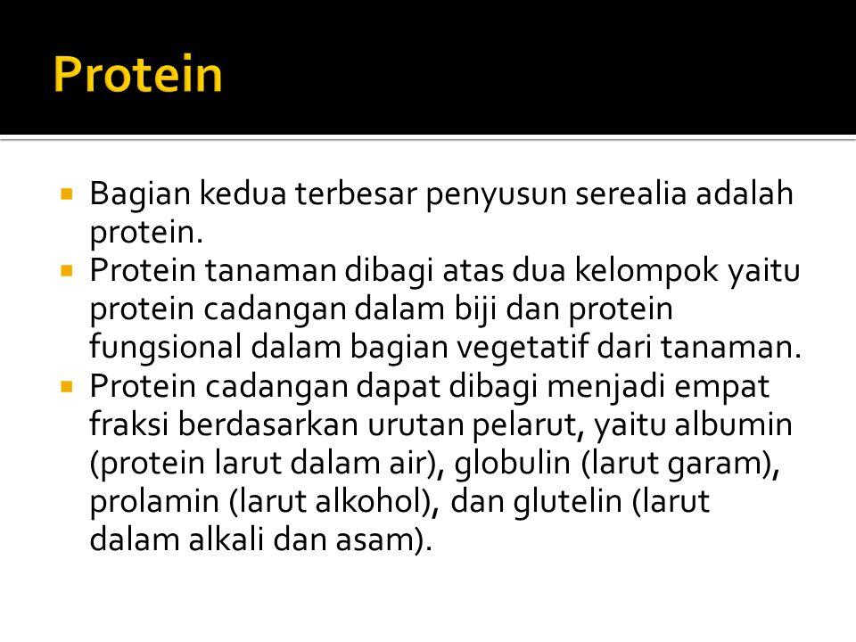 Protein Bagian kedua terbesar penyusun serealia adalah protein.