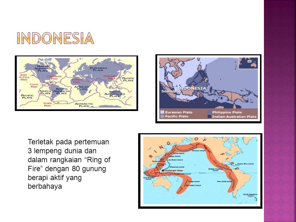 INDONESIA Terletak pada pertemuan 3 lempeng dunia dan