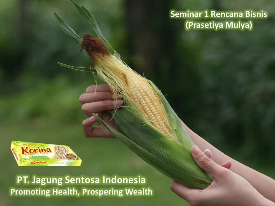PT. Jagung Sentosa Indonesia