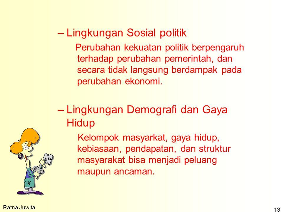 Lingkungan Sosial politik