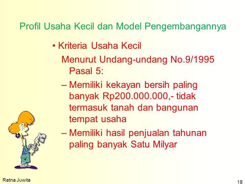 Profil Usaha Kecil dan Model Pengembangannya