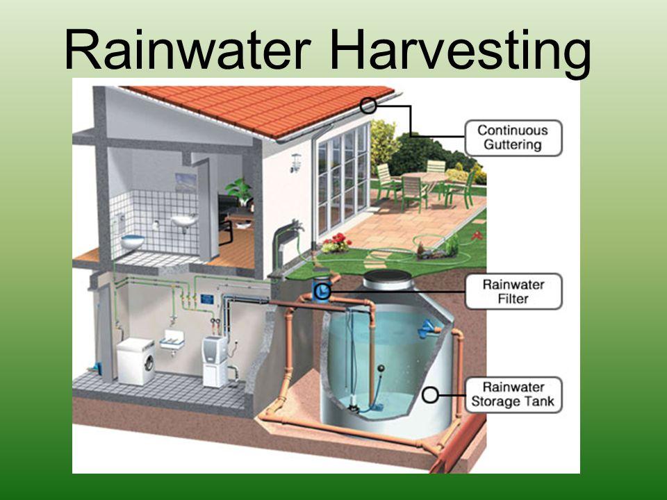 Rainwater Harvesting Tadah air hujan dan manfaatkan untuk menyiram tanaman, membersihkan lantai dsb.