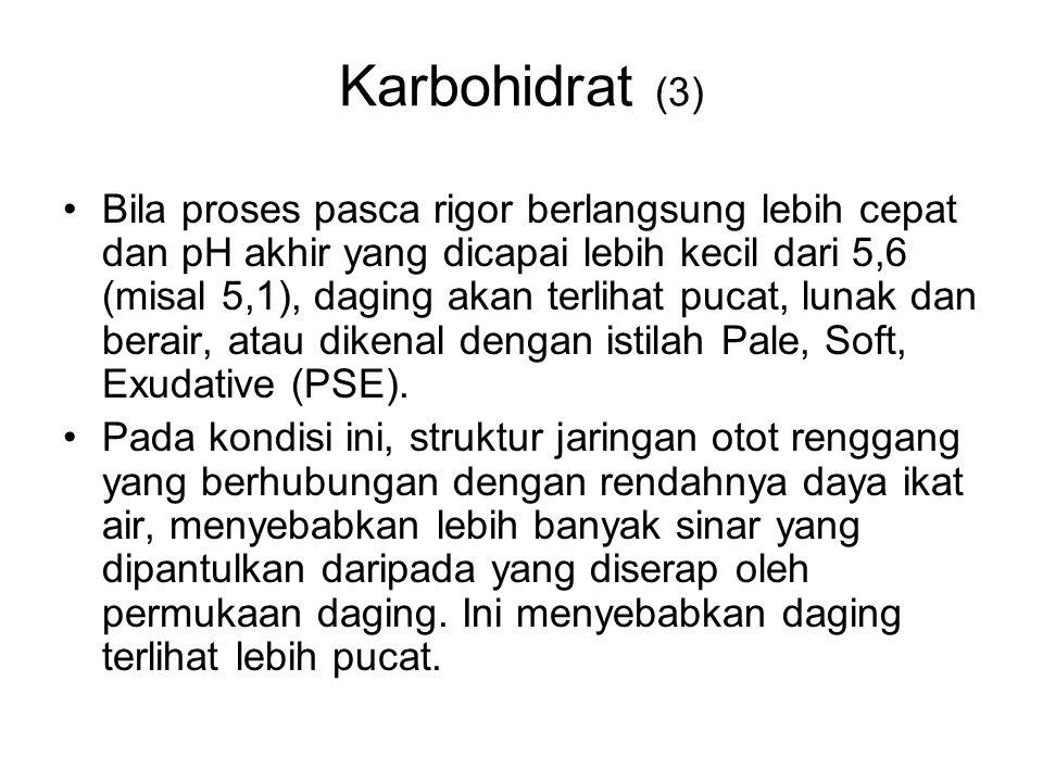 Karbohidrat (3)