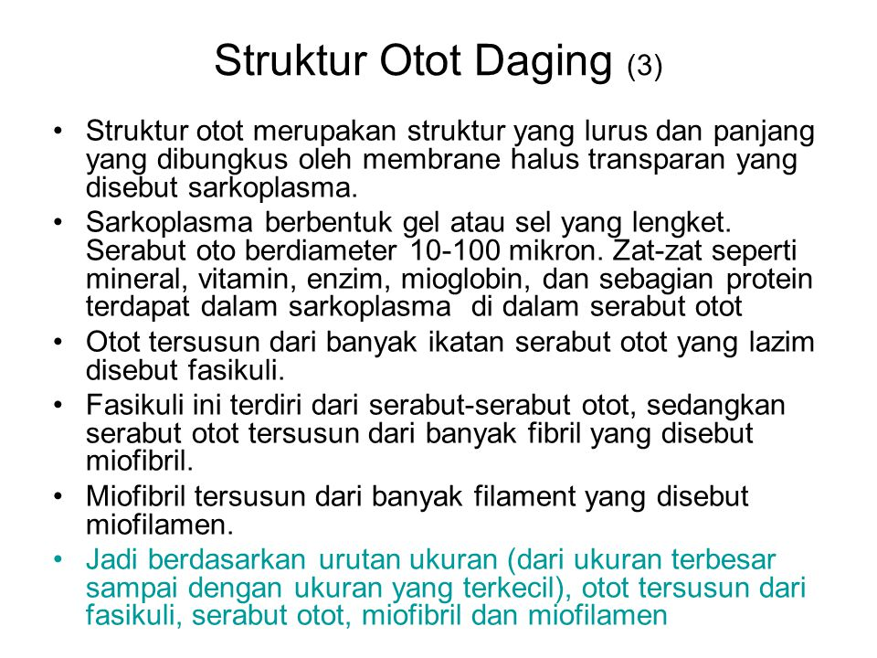 Struktur Otot Daging (3)