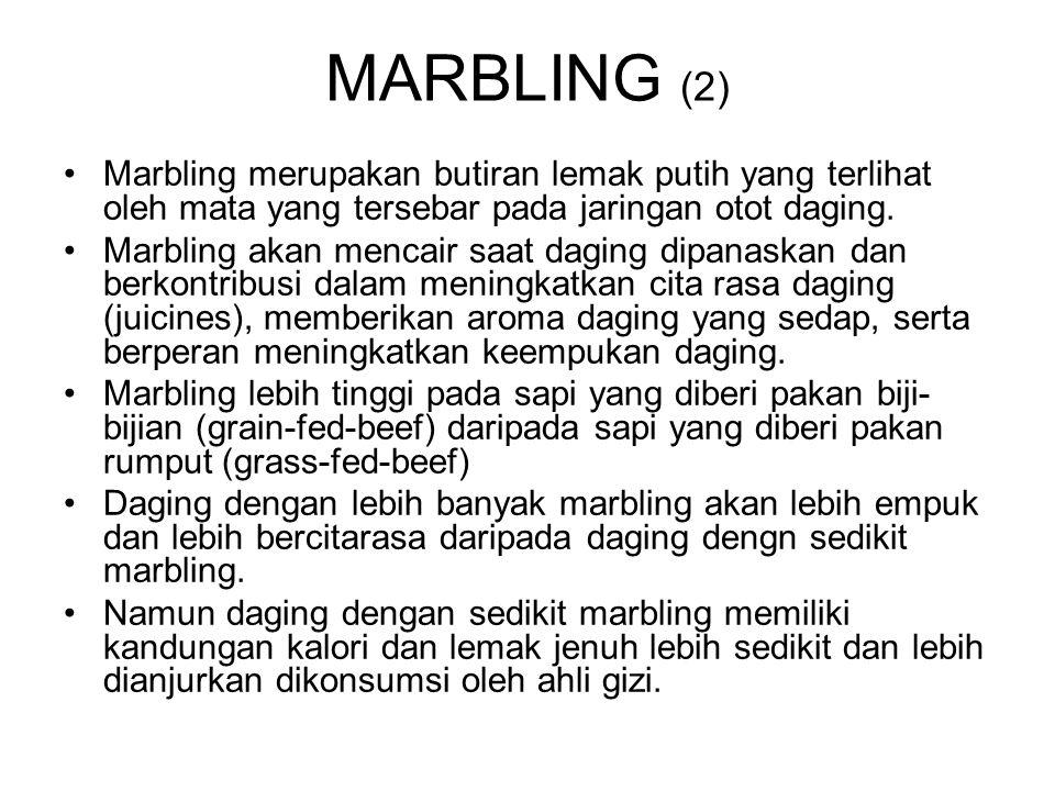MARBLING (2) Marbling merupakan butiran lemak putih yang terlihat oleh mata yang tersebar pada jaringan otot daging.