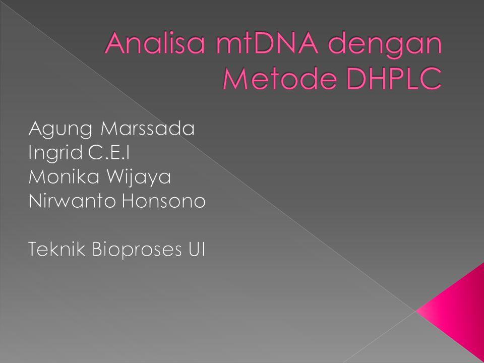 Analisa mtDNA dengan Metode DHPLC