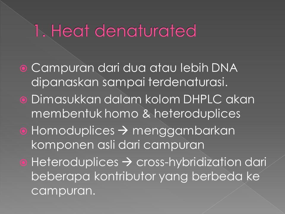 1. Heat denaturated Campuran dari dua atau lebih DNA dipanaskan sampai terdenaturasi.