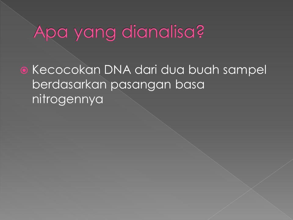 Apa yang dianalisa Kecocokan DNA dari dua buah sampel berdasarkan pasangan basa nitrogennya