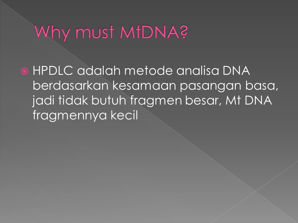 Why must MtDNA.