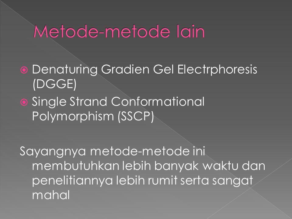 Metode-metode lain Denaturing Gradien Gel Electrphoresis (DGGE)
