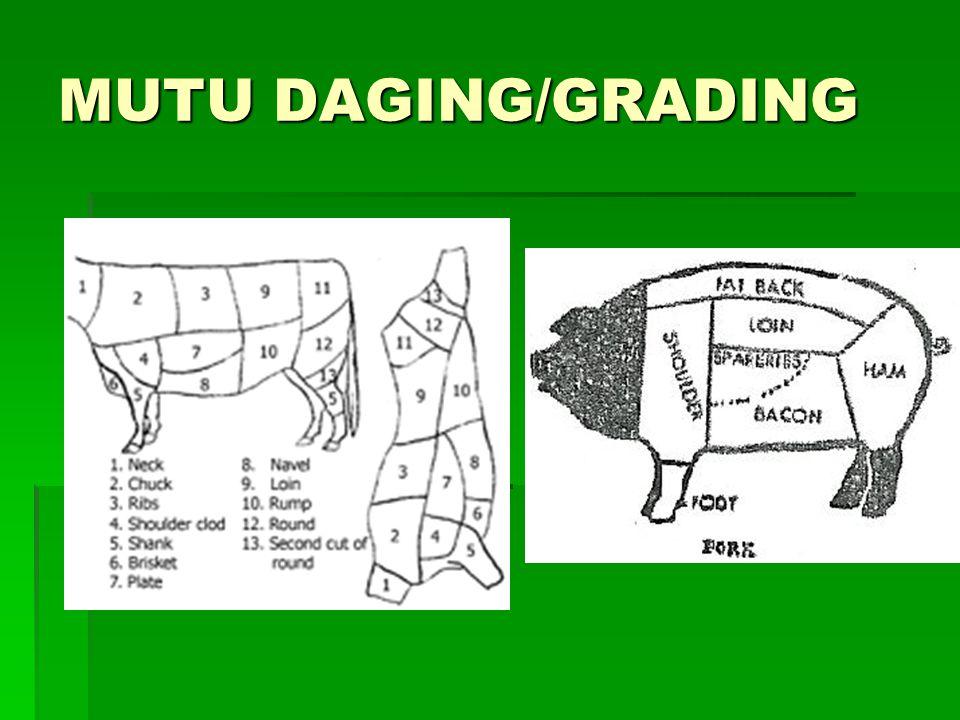 MUTU DAGING/GRADING
