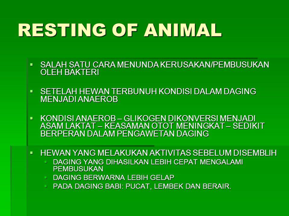 RESTING OF ANIMAL SALAH SATU CARA MENUNDA KERUSAKAN/PEMBUSUKAN OLEH BAKTERI. SETELAH HEWAN TERBUNUH KONDISI DALAM DAGING MENJADI ANAEROB.