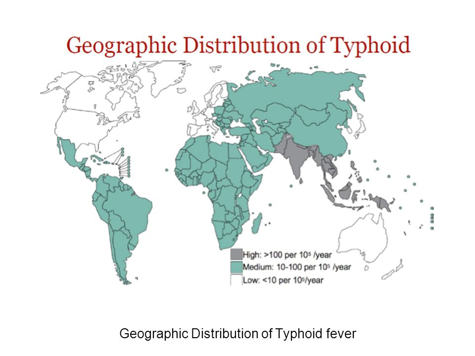 Geographic Distribution of Typhoid fever