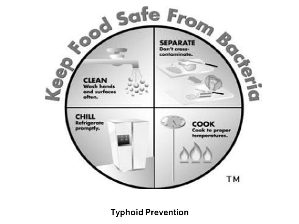 Typhoid Prevention