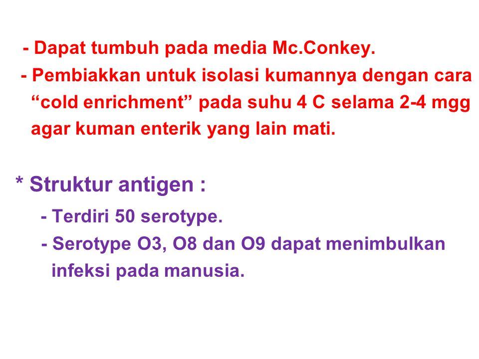 - Dapat tumbuh pada media Mc.Conkey.