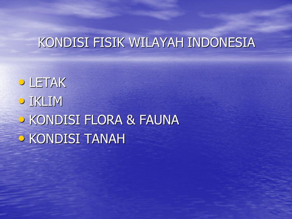 KONDISI FISIK WILAYAH INDONESIA