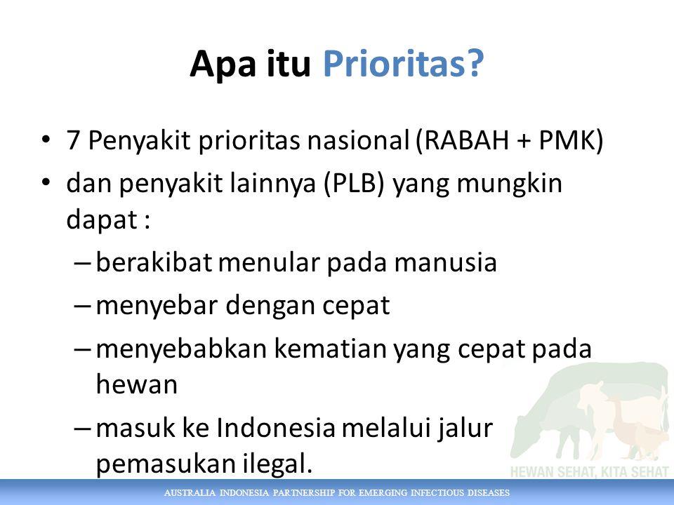 Apa itu Prioritas 7 Penyakit prioritas nasional (RABAH + PMK)