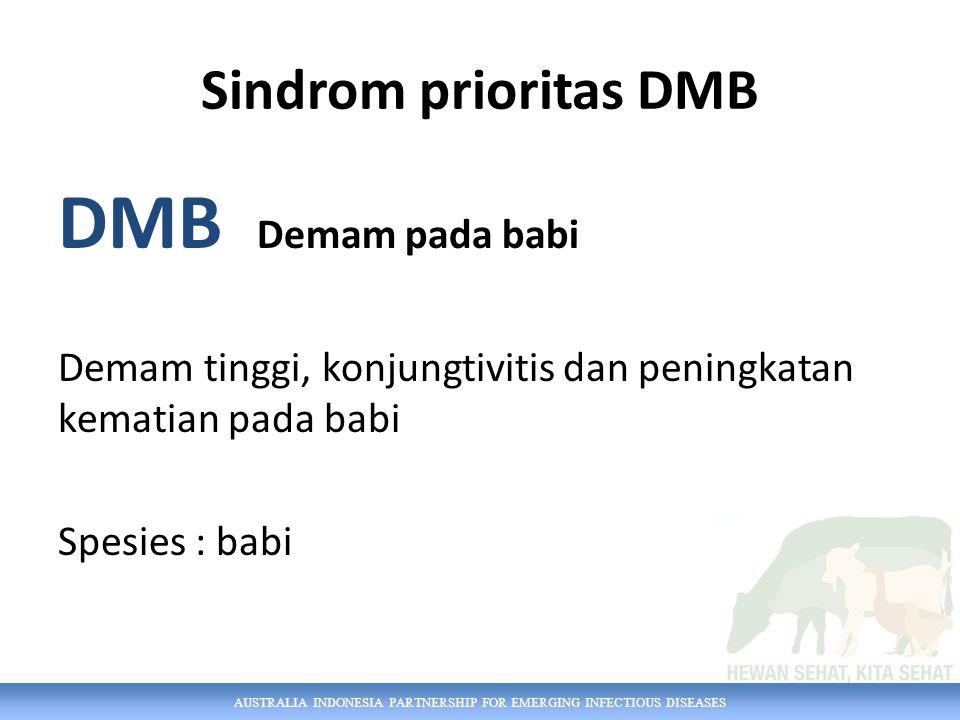 DMB Demam pada babi Sindrom prioritas DMB