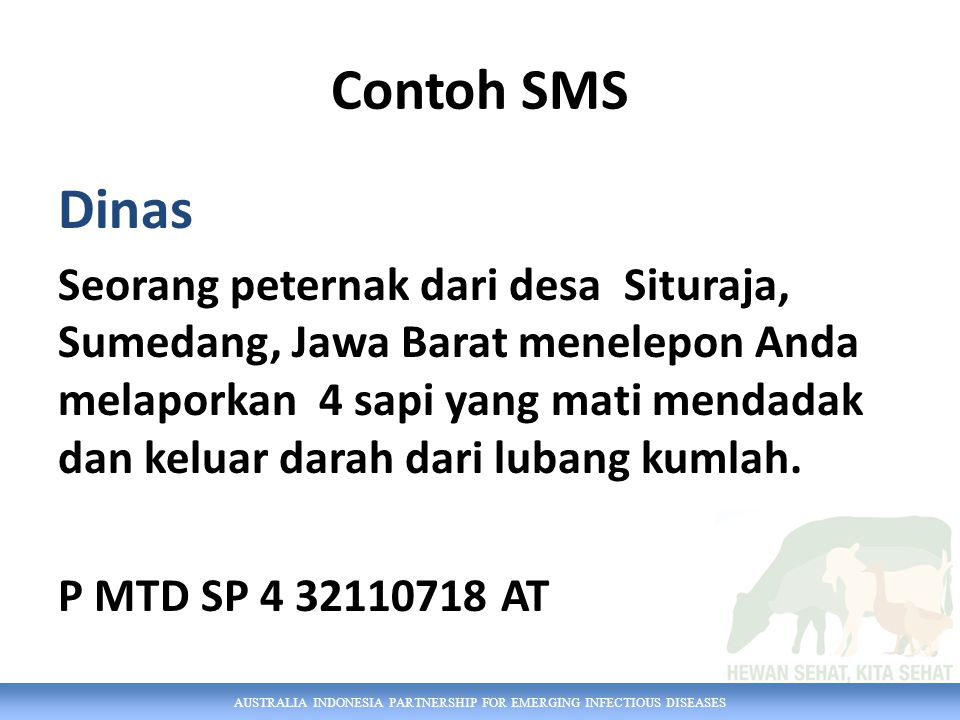Contoh SMS Dinas.