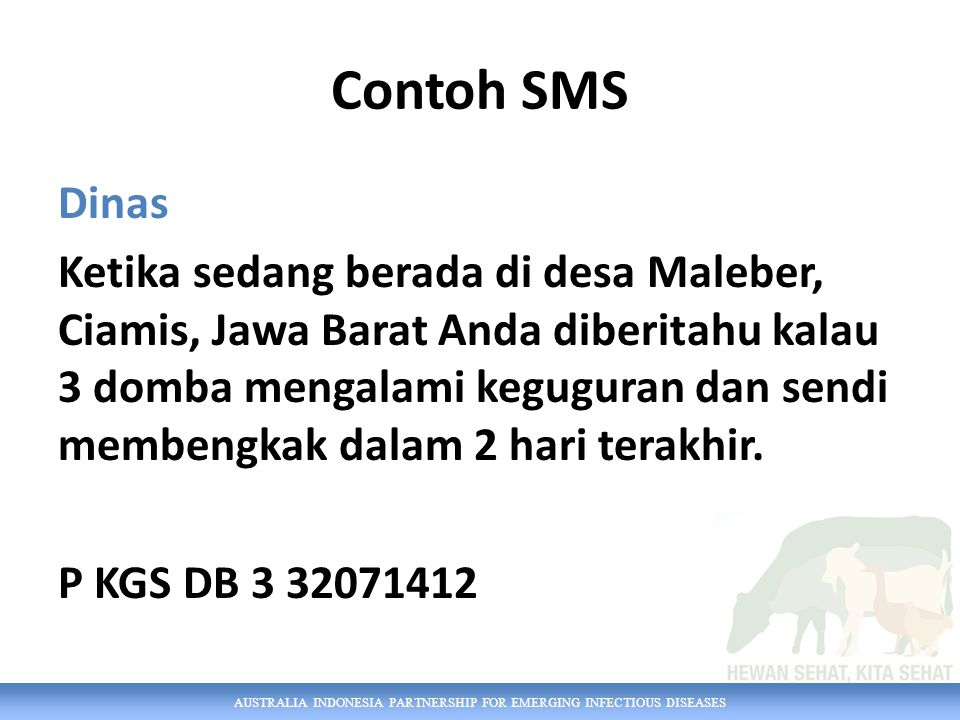 Contoh SMS