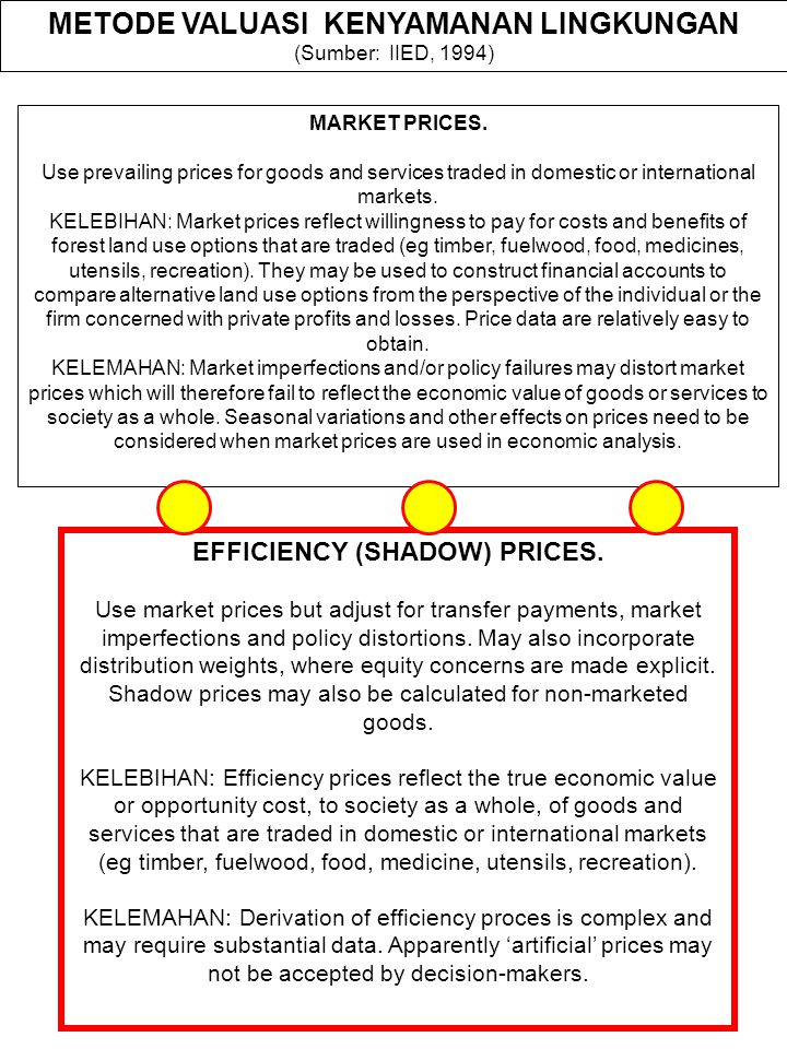 EFFICIENCY (SHADOW) PRICES.