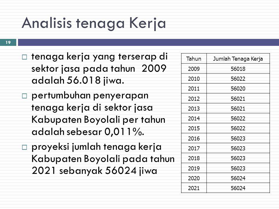 Analisis tenaga Kerja tenaga kerja yang terserap di sektor jasa pada tahun 2009 adalah 56.018 jiwa.