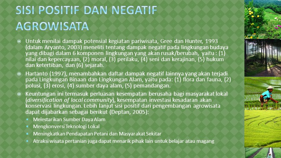 Sisi Positif dan Negatif Agrowisata