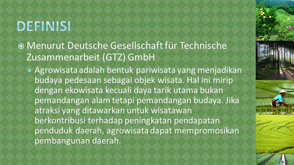 Definisi Menurut Deutsche Gesellschaft für Technische Zusammenarbeit (GTZ) GmbH.